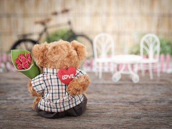 brown-bear-plush-toy-holding-red-rose-flower-1028729.jpg